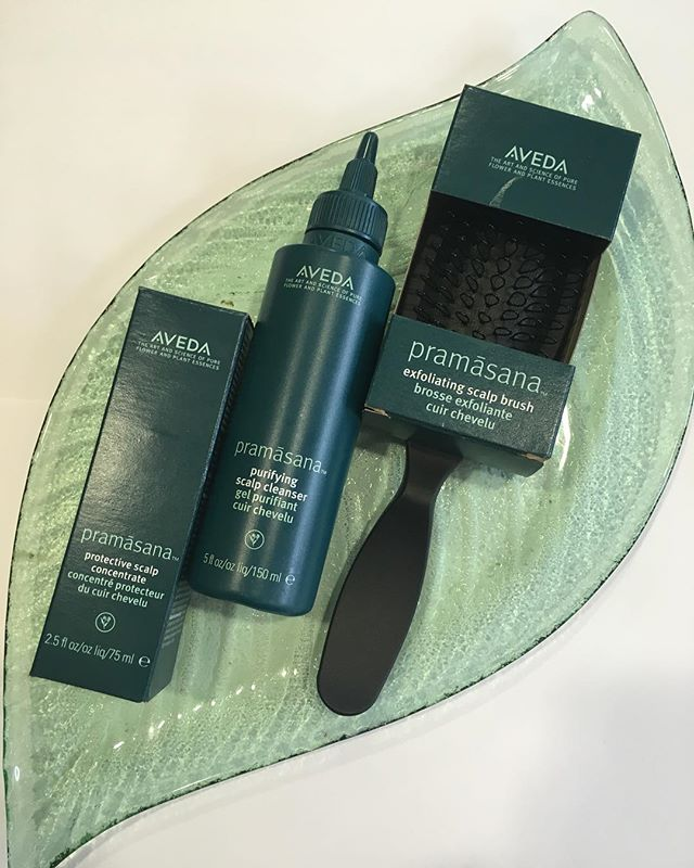 AVEDA PRAMASANA SCALP CLEANSING COLLECTION