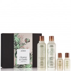 Aveda Cleanse & Clarify Rosemary Mint Collection